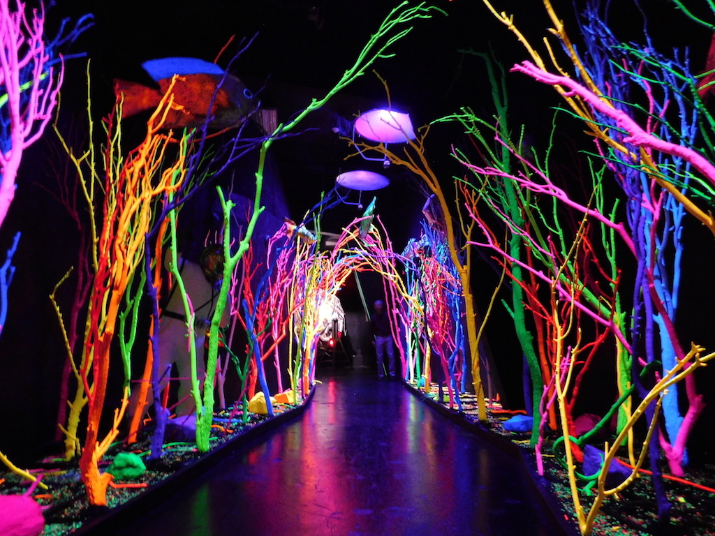 Looking for a mind blowing experience enter meow wolf s for Www the house com returns